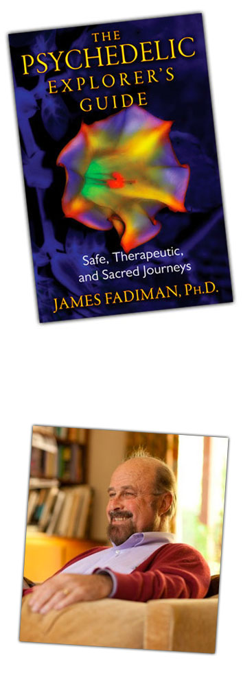 Psychedelic Explorer's Guide - James Fadiman